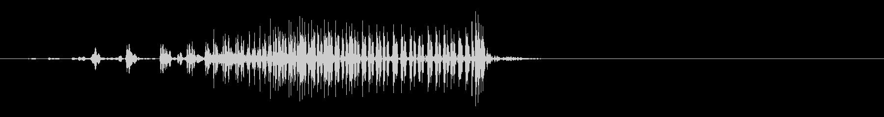 ジャー!ファスナー、チャックが閉まる音6の未再生の波形