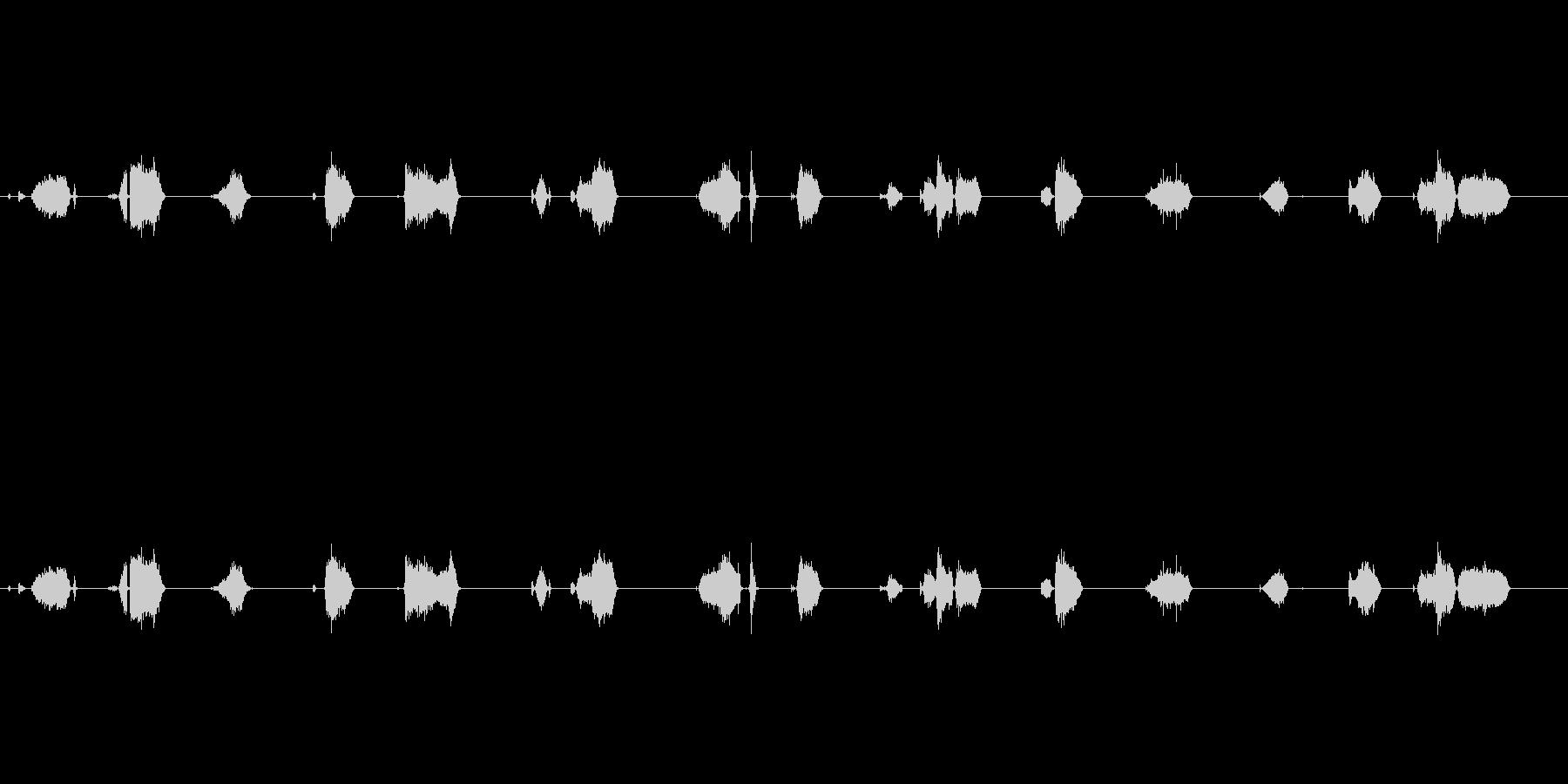 【フェルトペン02-1(書く)】の未再生の波形