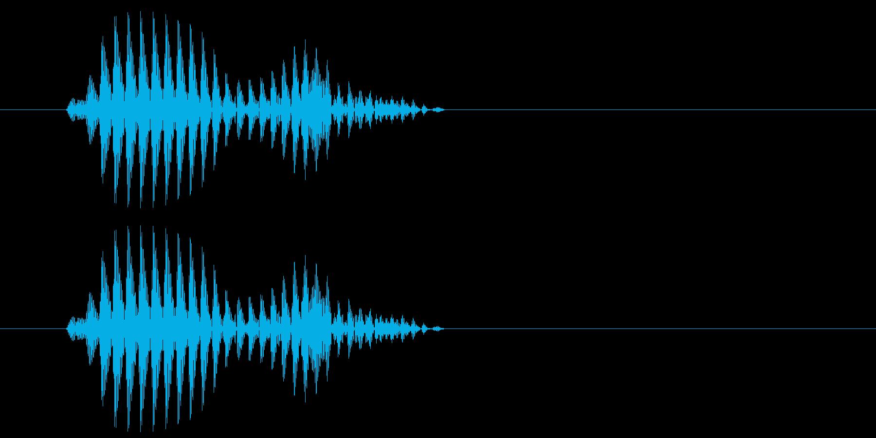 ギュ(サンダルで少し滑った音)の再生済みの波形