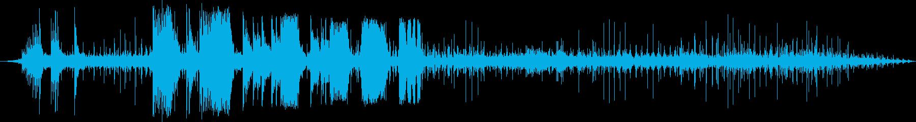 ロイヤルガードホース1-00の再生済みの波形