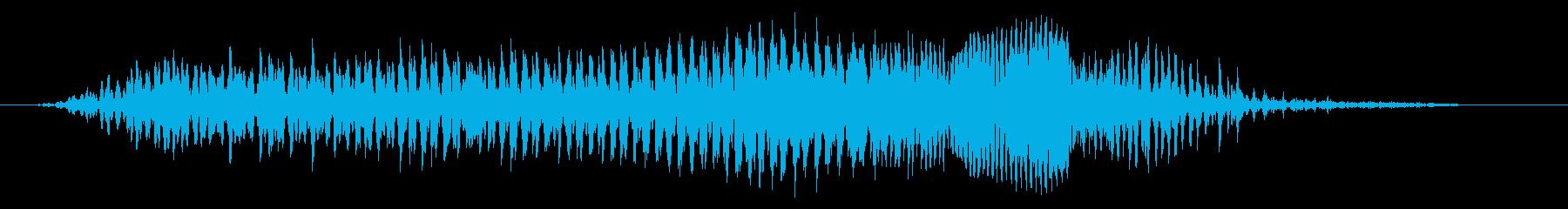 成人男性:圧力うなり声の再生済みの波形