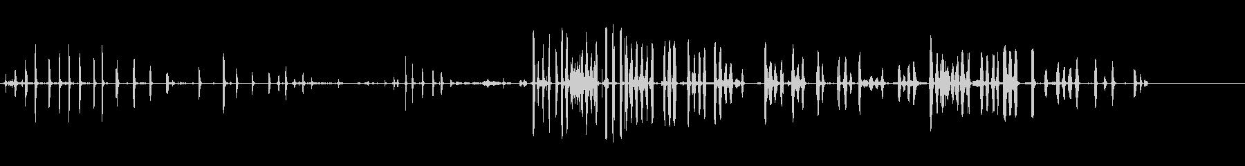 ヤングフォックス-ファイティングの未再生の波形