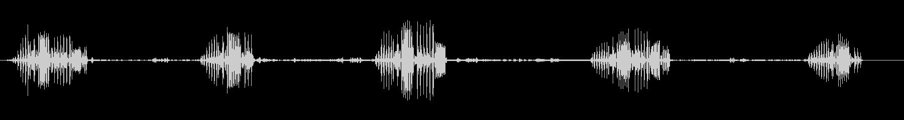 カーゴレットの未再生の波形