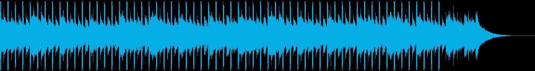 これは情報です(30秒)の再生済みの波形