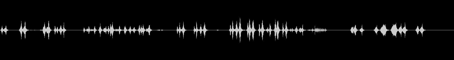 ツバメの鳴き声(巣立ち前の雛)の未再生の波形
