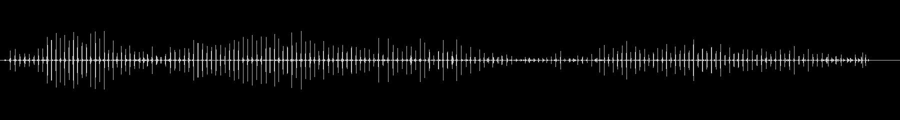 馬-速歩-固い表面-乗車-哺乳類1_03の未再生の波形