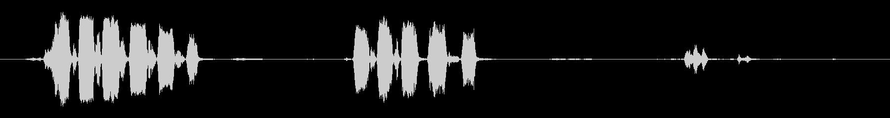熱帯の鳥:大音量のYelp、間近の未再生の波形