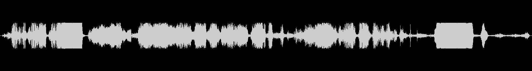 豚 群れグラントスクリームメニー01の未再生の波形