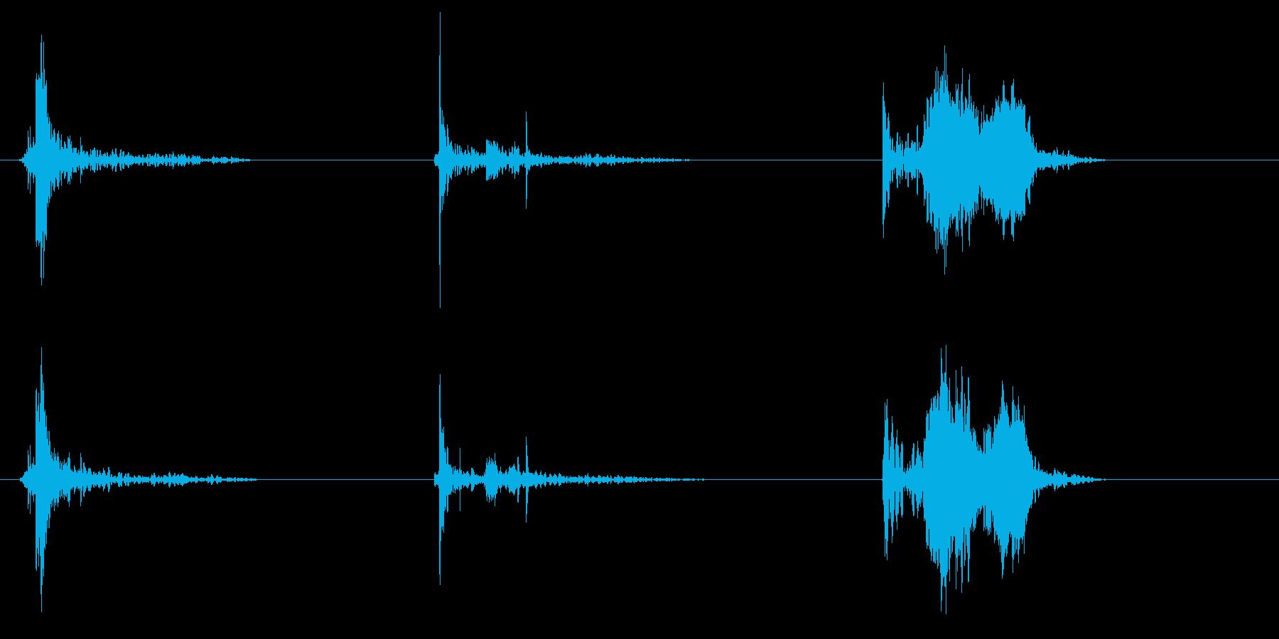 フレンチドア;中型オープン、残響イ...の再生済みの波形