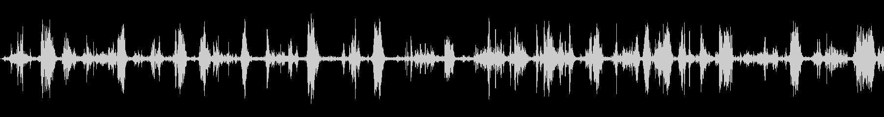 犬の食事;ヴィンテージ録音;犬の未再生の波形