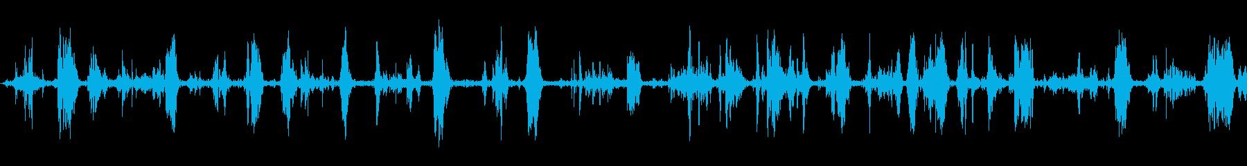 犬の食事;ヴィンテージ録音;犬の再生済みの波形