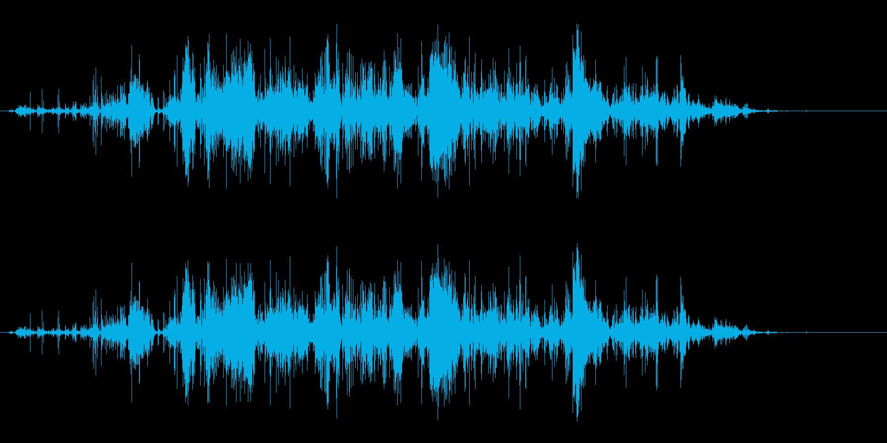 ギフト開封-プレゼントの再生済みの波形