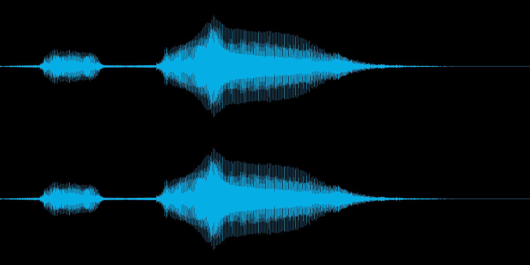 ぶっぶー(不正解) - 女の子(4歳) の再生済みの波形