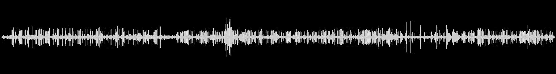 【自然音】栃木山中の鳥の声_3の未再生の波形