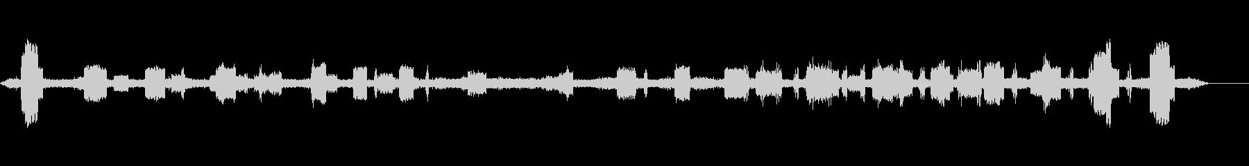 セミクリケット-昆虫4の未再生の波形