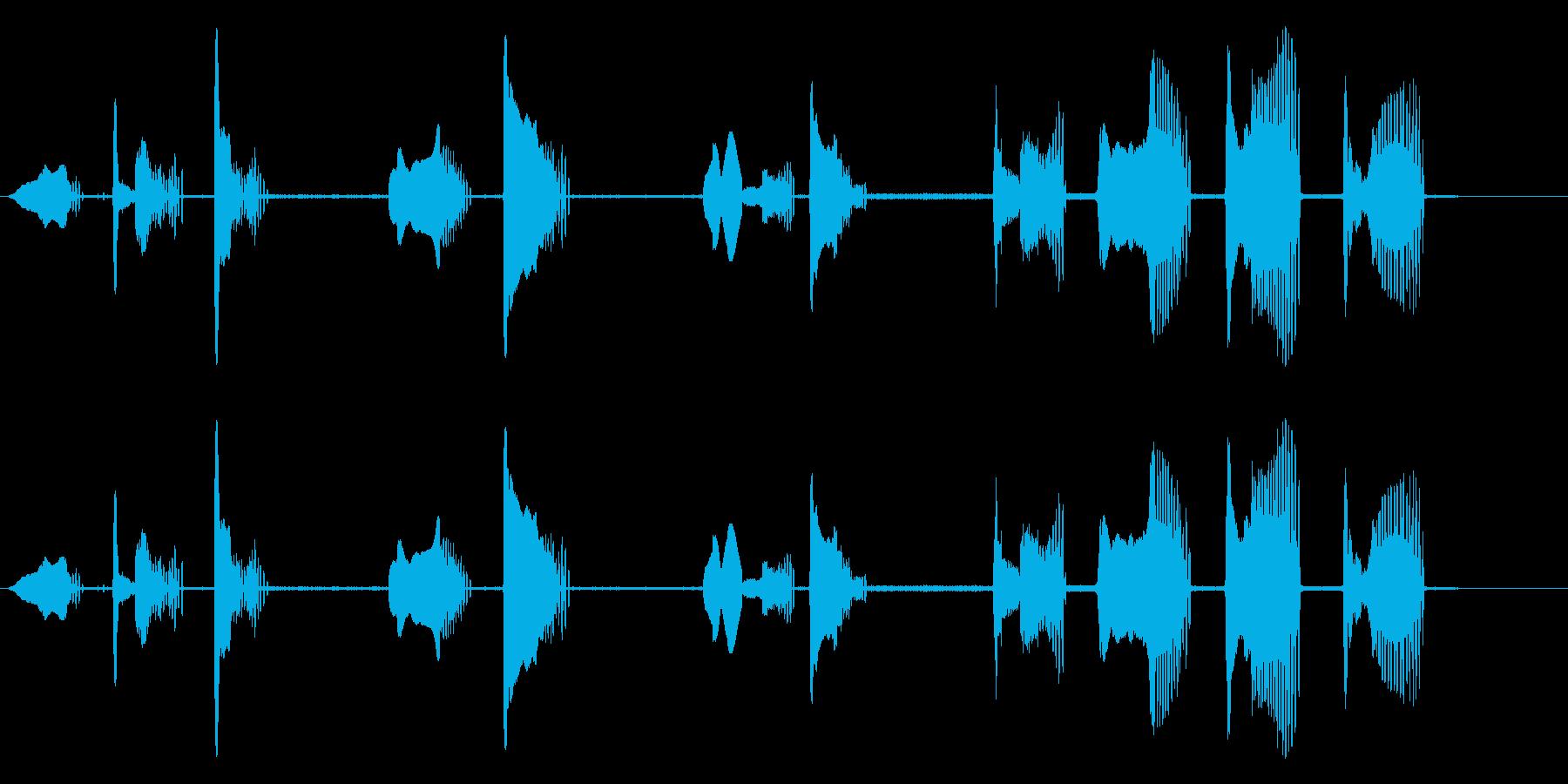ミラノ・ブラックの再生済みの波形