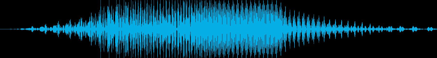 ロンの再生済みの波形