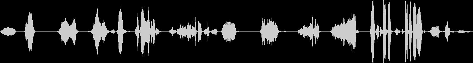 男性:クレイジー・マン・グランティ...の未再生の波形