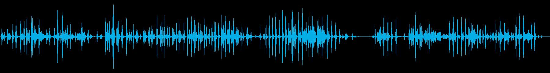 屋内:いくつかの子犬が鳴り、犬の再生済みの波形