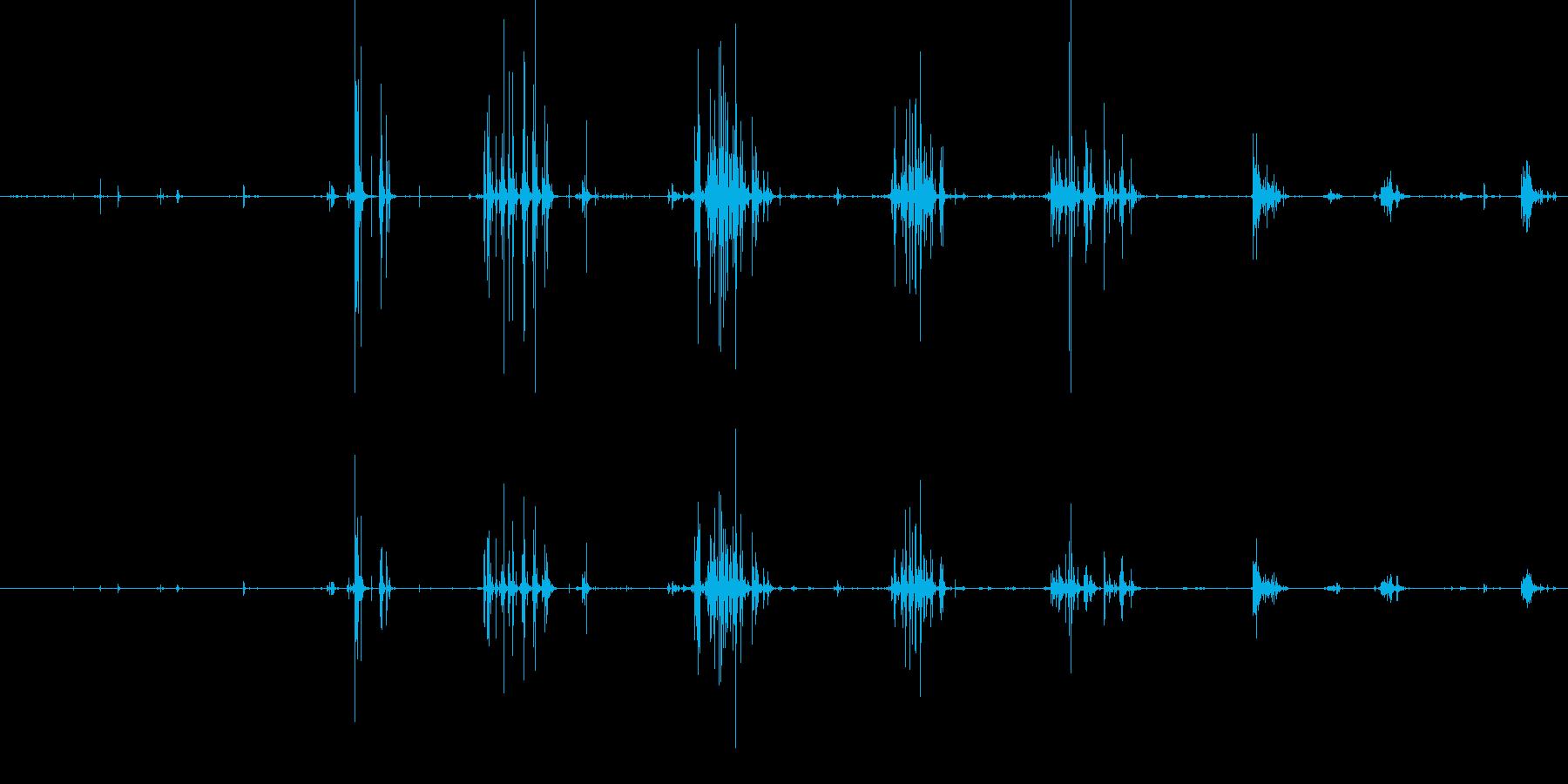 パリパリという咀嚼音の再生済みの波形
