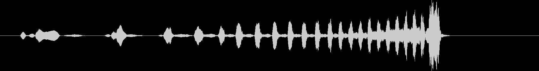 ギボンコール。 2つのテナガザルは...の未再生の波形