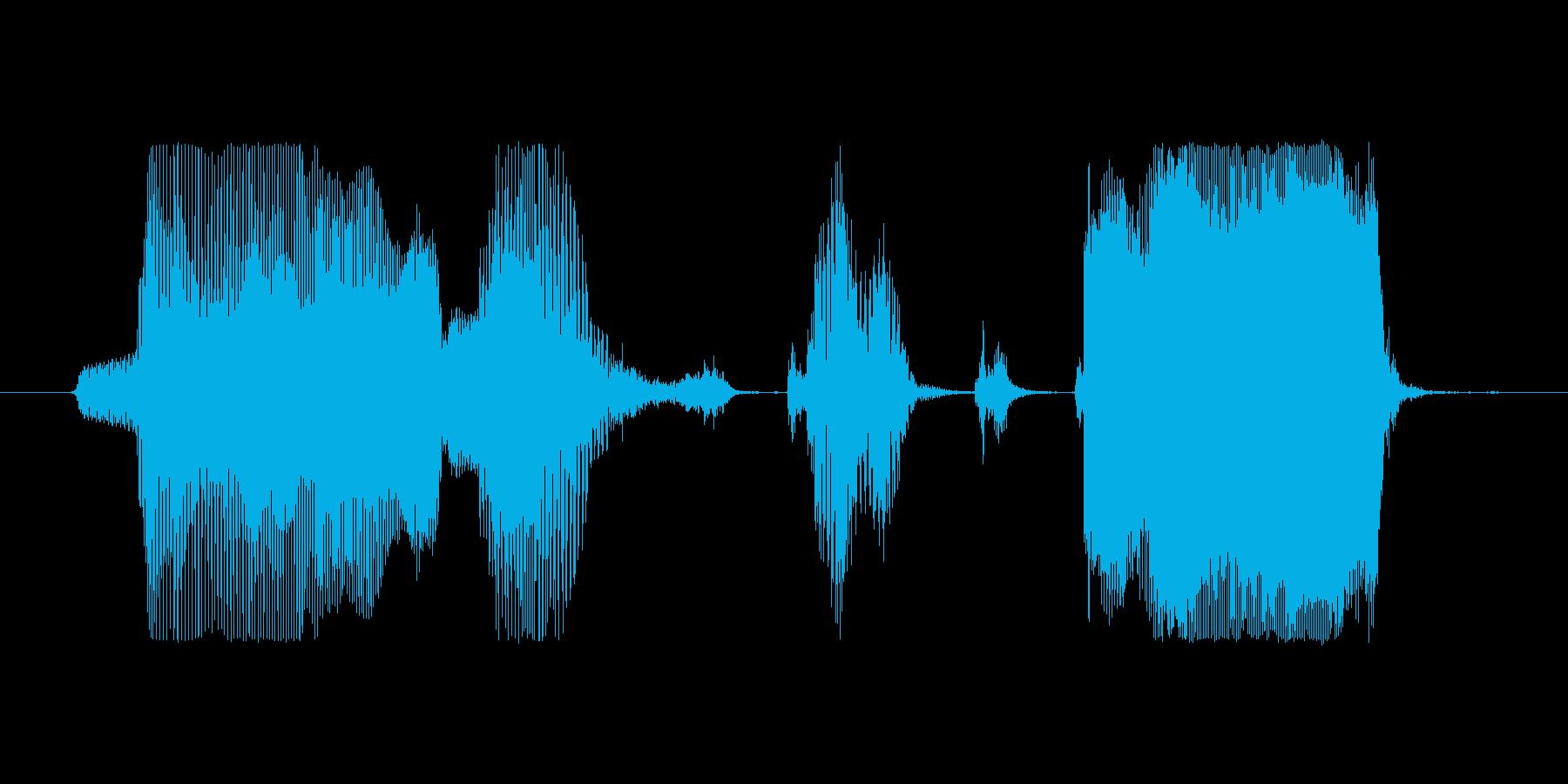 ボーナス確定の再生済みの波形