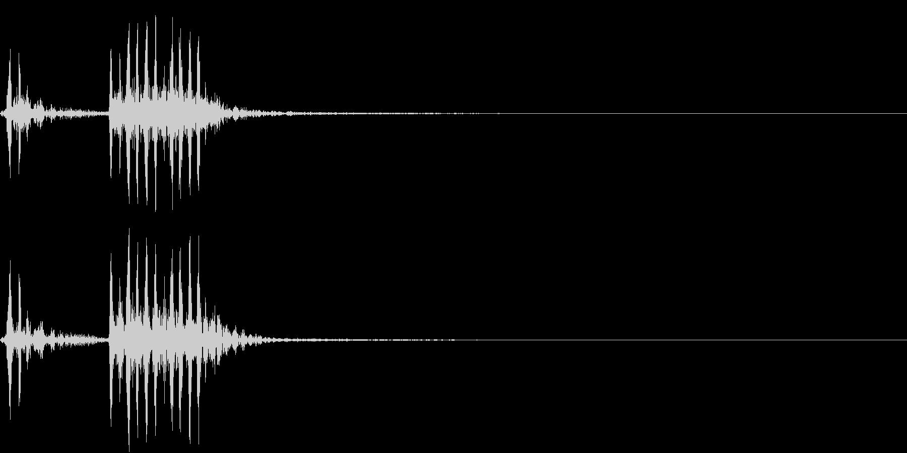 【生録音】フラミンゴの鳴き声 8の未再生の波形
