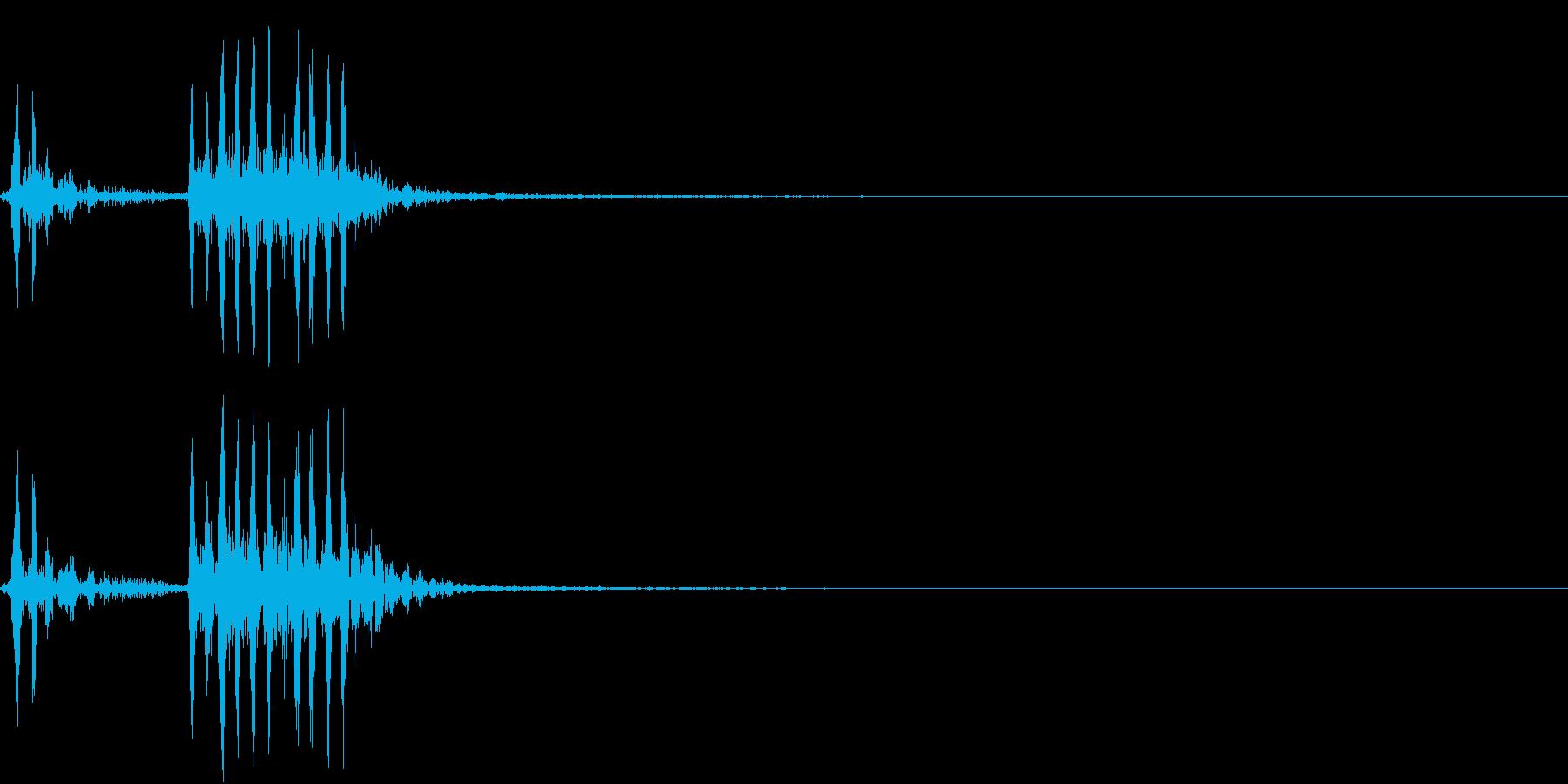 【生録音】フラミンゴの鳴き声 8の再生済みの波形