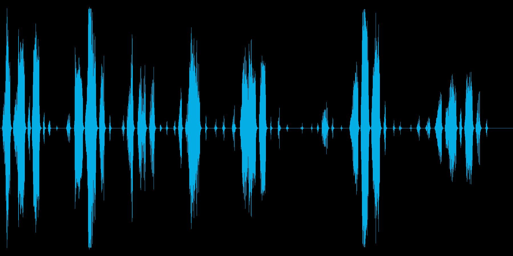 猿、オマキザルびびり、悲鳴。びびり...の再生済みの波形