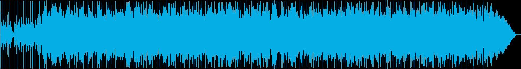 Yasuya Yunta / Okinawan folk song's reproduced waveform