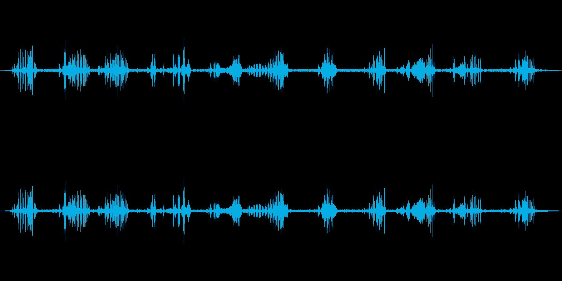野の鳥の再生済みの波形