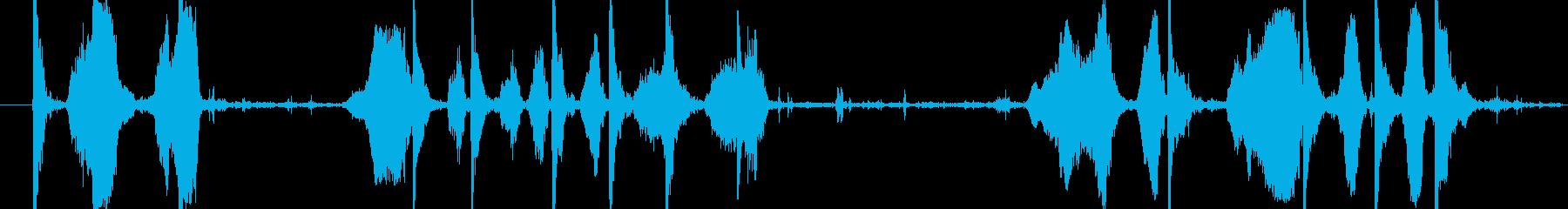 学校の子供たちの演奏の再生済みの波形