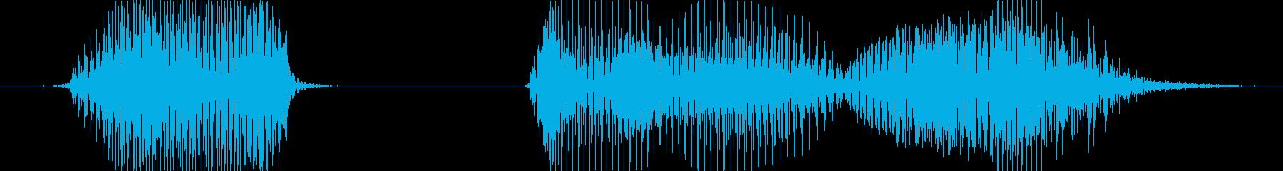 やったね!の再生済みの波形