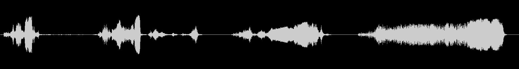 ロシアのイノシシ:他の野生動物の鳴き声の未再生の波形