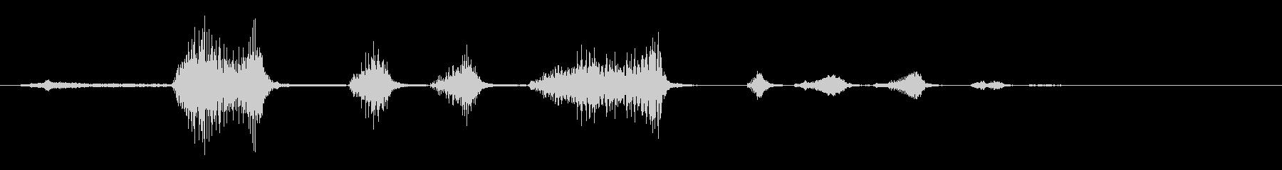 男性:笑い声、人間の笑い声、男性の...の未再生の波形