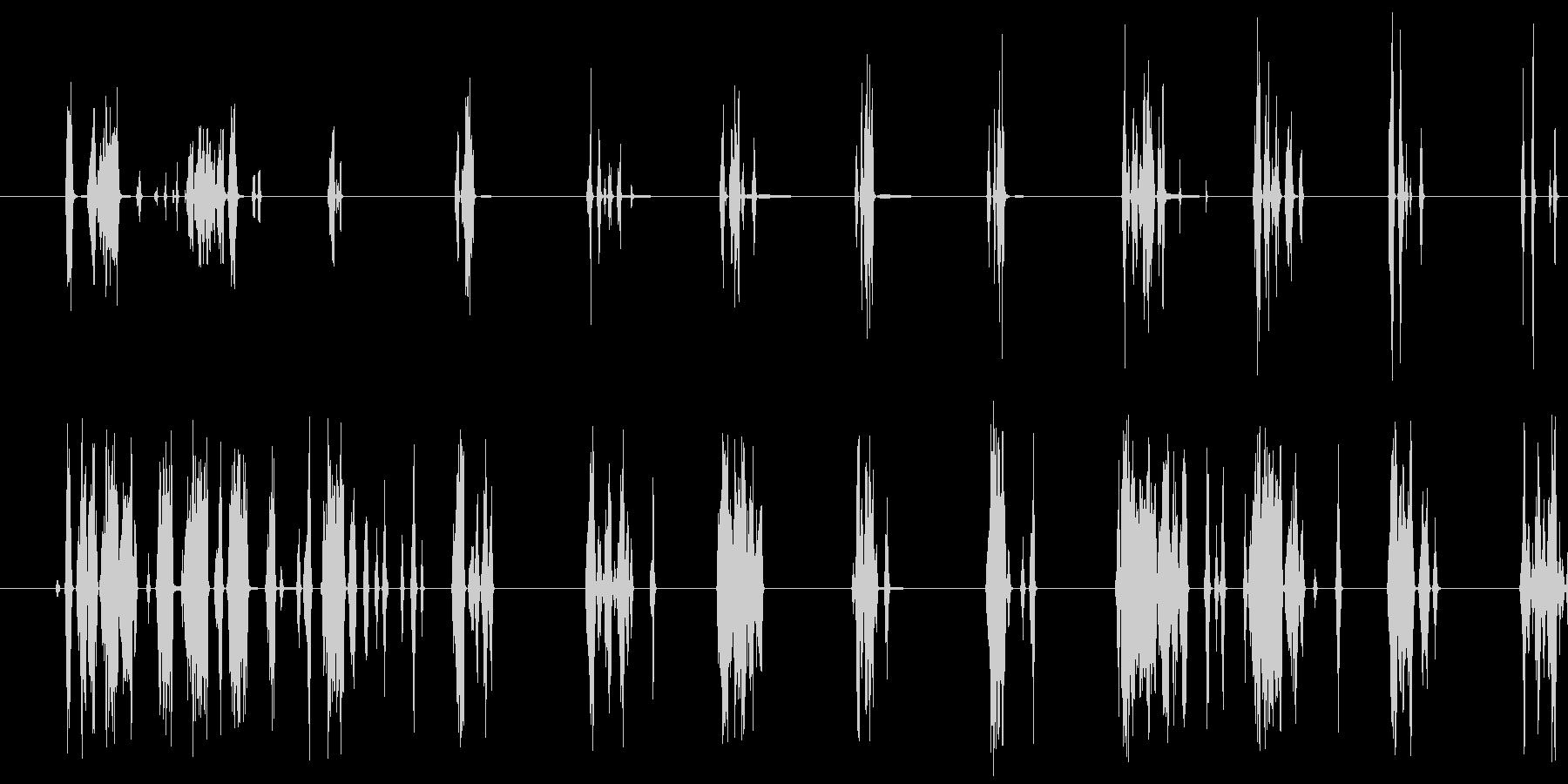 短いカリカリSt音の未再生の波形