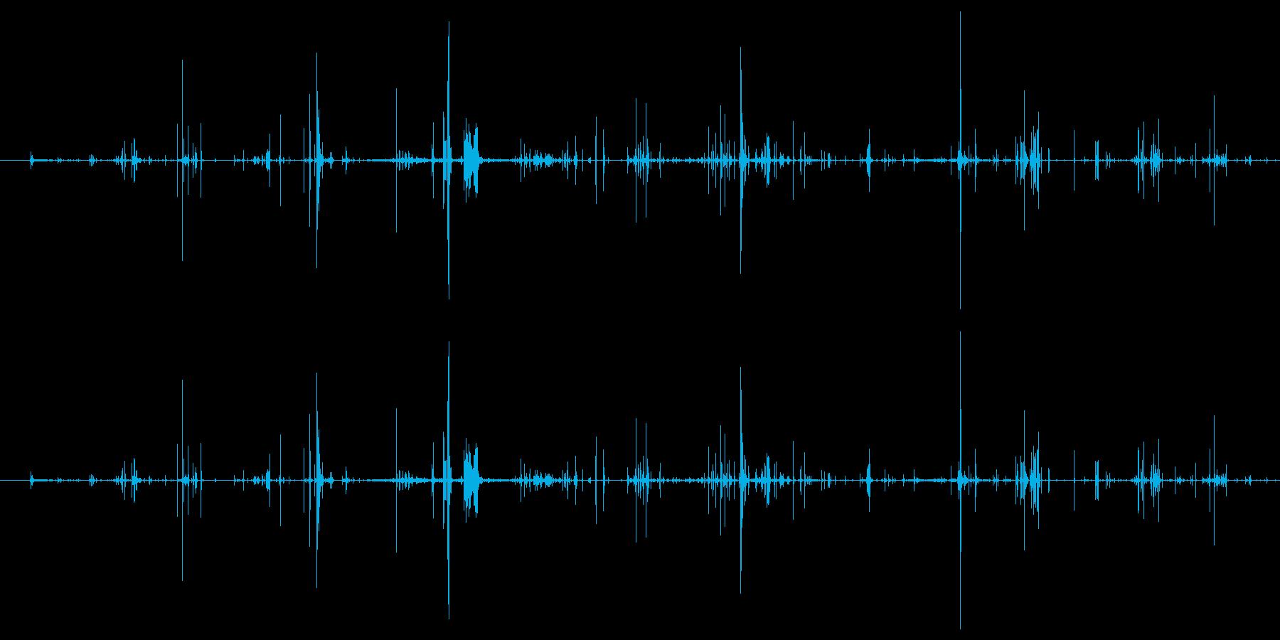 モンスター 肉食が遅い01の再生済みの波形