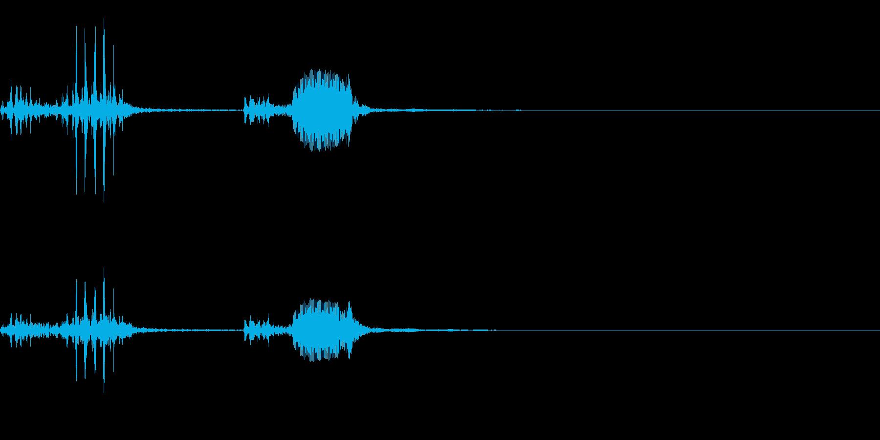 【生録音】フラミンゴの鳴き声 23の再生済みの波形