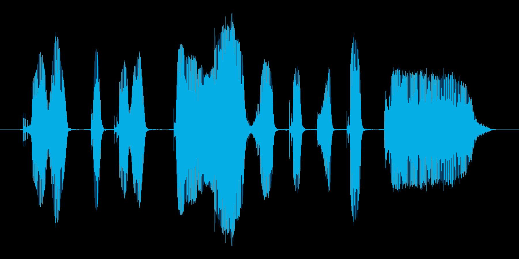 クリッククリック、マウスカチカチ~。の再生済みの波形