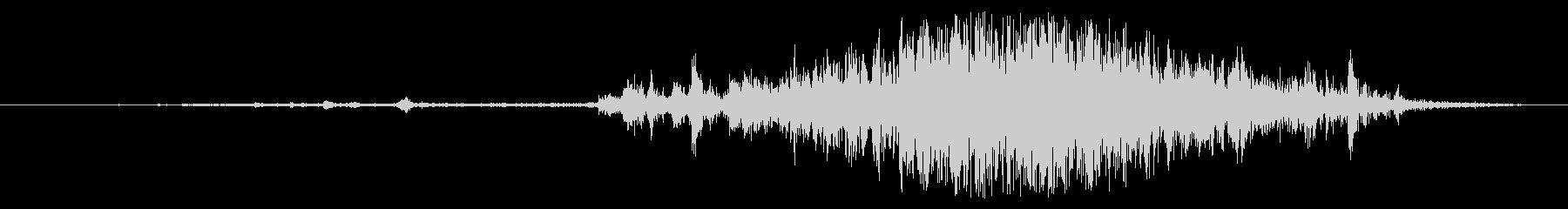 ボブスレー:スタートライン、ボイスの未再生の波形