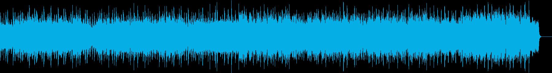 和風 田舎 京都 紀行 歴史 伝統 正月の再生済みの波形