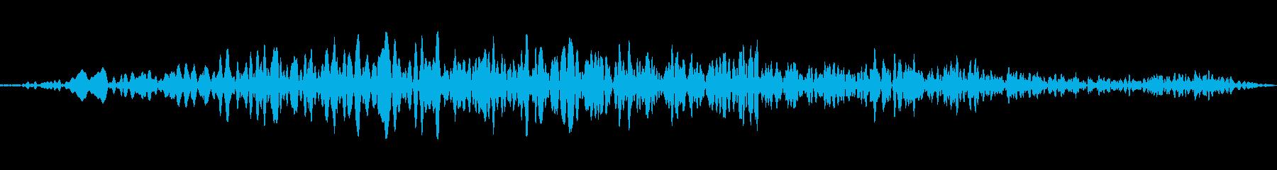 ドローンランブルディープロングwavの再生済みの波形