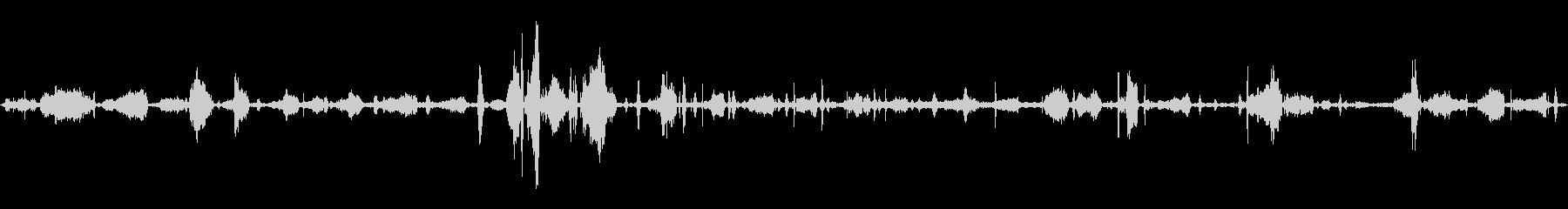 ワイルドボブキャット:うなり声とうなり声の未再生の波形