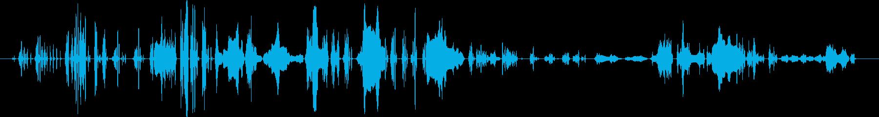 女性の悲鳴の再生済みの波形