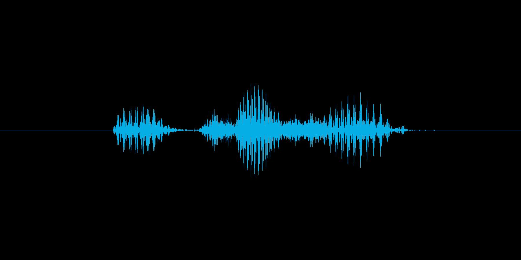 一時(1時、いちじ)(男性)の再生済みの波形