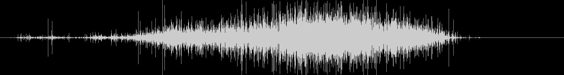 ササー(レインスティック)Bの未再生の波形