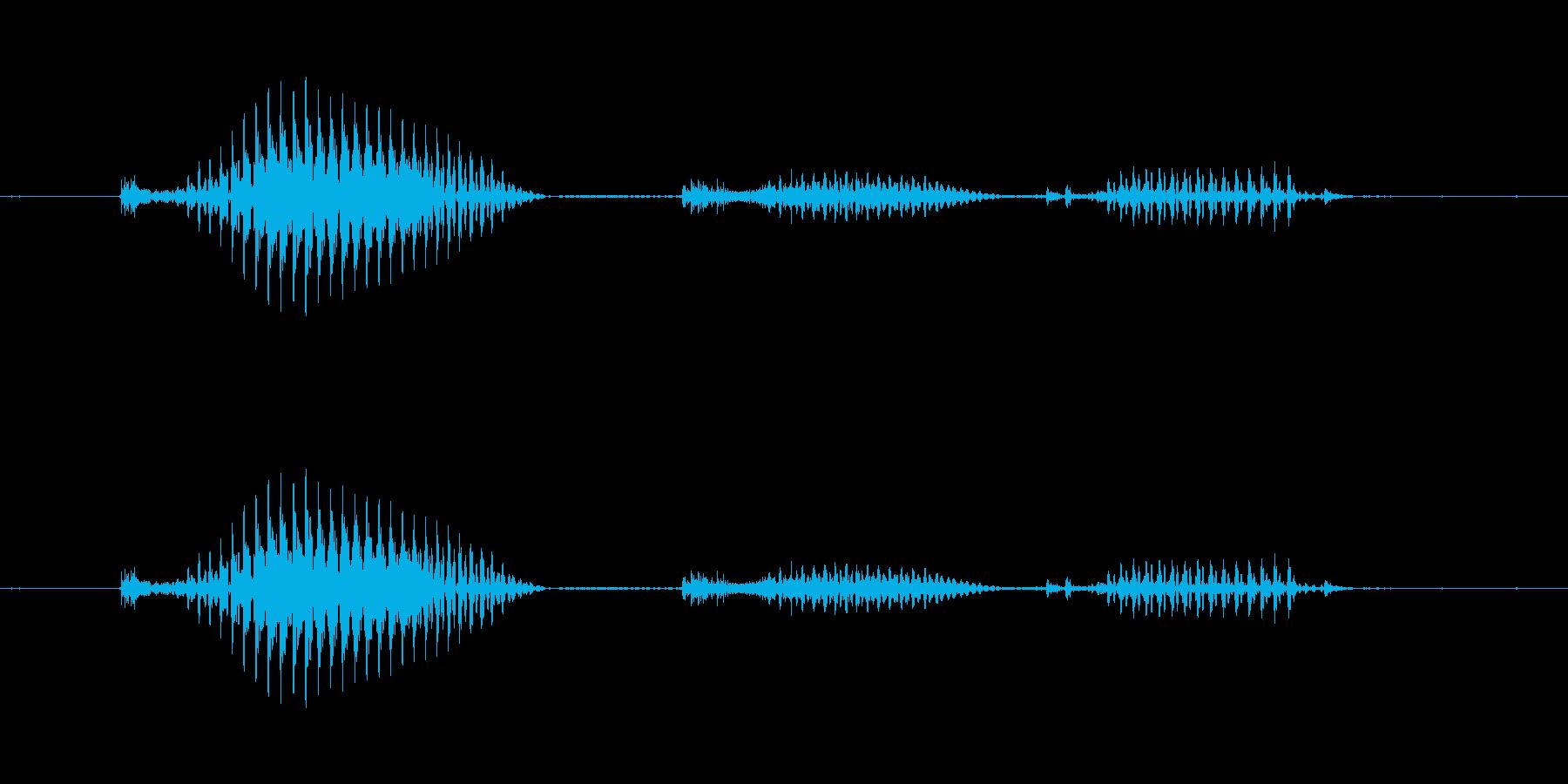【日数・後】10日後の再生済みの波形