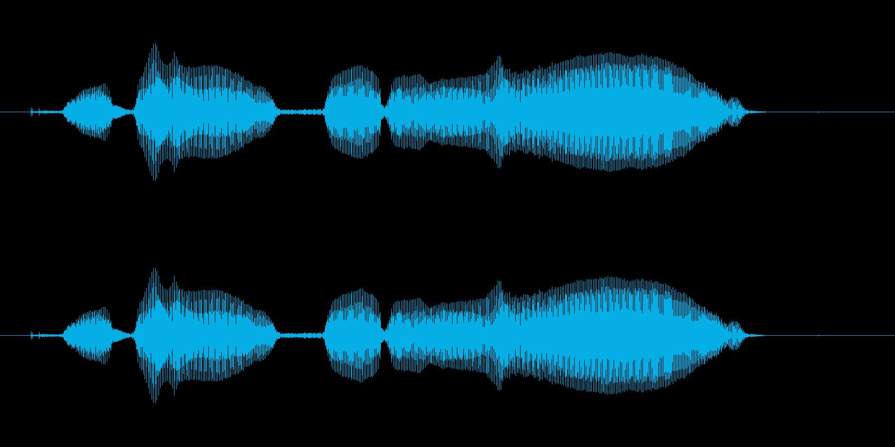 起動するよ〜の再生済みの波形