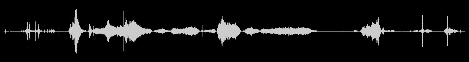 英語ブルドッグ:喘鳴の未再生の波形