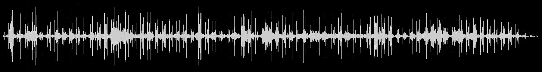 超音波ソノグラフ:一定の鼓動の未再生の波形